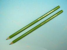 Pastelka světle zelená dlouhá