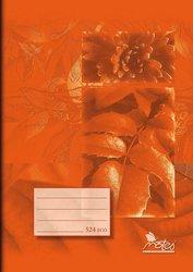 Školní sešit A5 -linkovaný 20 listů - Economy Notes - 524
