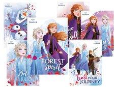 Pohlednice sr Y029 F Disney (Frozen) UV