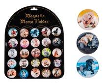 MFP Magnet dekorační kulatý 3,5cm mix 6 - zvířata