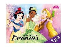 Desky na číslice MFP Disney (Princess)